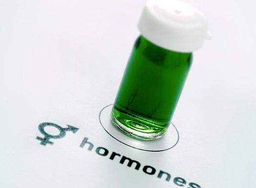 Нами руководят гормоны!
