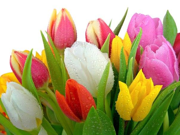 От букетика тюльпанов до Ipad: как видоизменились дамские вкусы