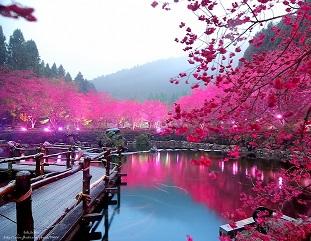 5 наиболее романтичных весенних городов