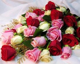 Розы для самой красивой пары