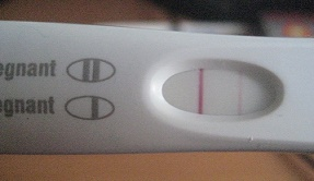 Стадии беременности